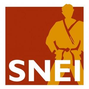 logo SNEI (1)